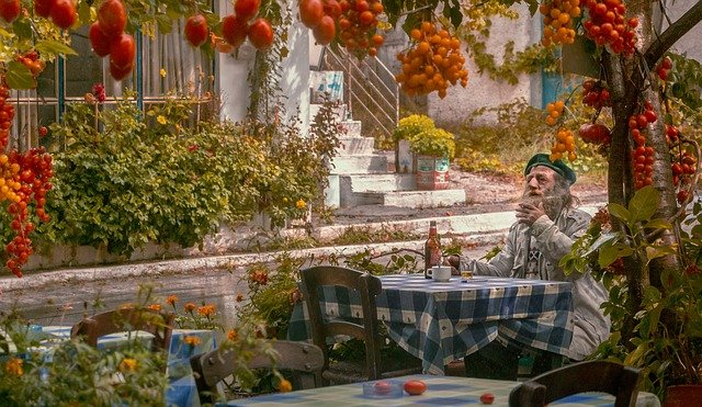 muž a rajčata