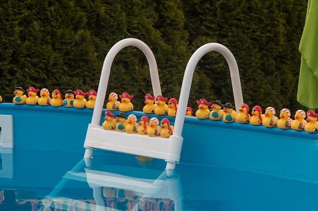 kachničky v bazénu
